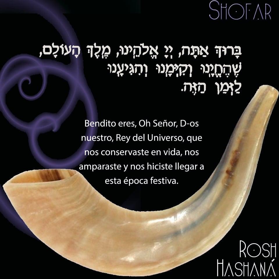 El Significado Del Shofar Enlace Judío