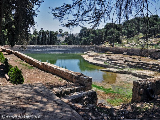 Las piscinas del rey salom n for Piscina arganda del rey