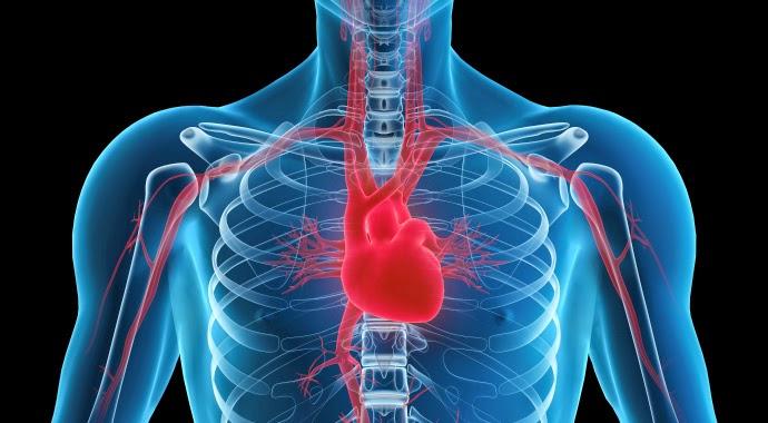 Resultado de imagen para Nano-Polímero podría prevenir la insuficiencia cardíaca.