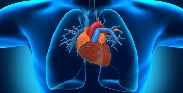 Centro Médico Cedar's Sinai: la medicina regenerativa recupera corazones dañados
