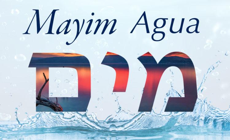 La palabra judía del día: Mayim / Agua