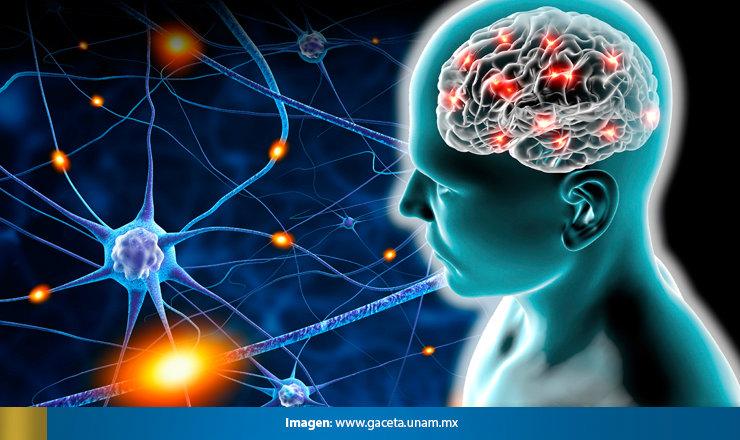 Israel a los 70 – Científicos israelíes y el futuro del cerebro