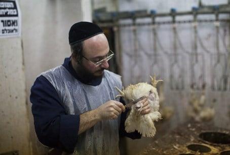 ¿Qué hace Kosher a la carne Kosher? Cuatro reglas básicas