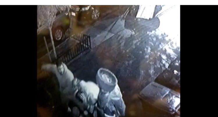 Jasídico es agredido en la cabeza en la ciudad de Nueva York