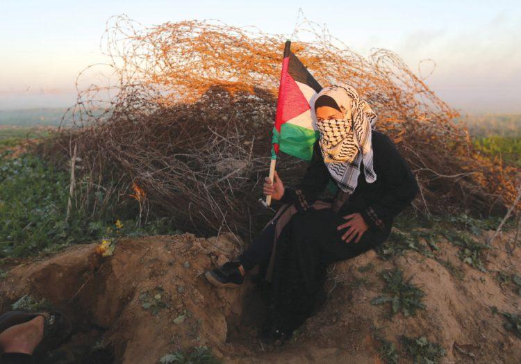 Encontrando la Paz: Los dilemas de Gaza