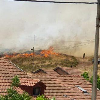 Grandes incendios afectan el centro y sur de Israel