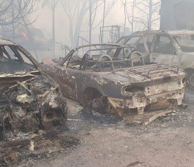 Italia, Croacia, Grecia y Chipre enviarán ayuda a Israel contra incendios